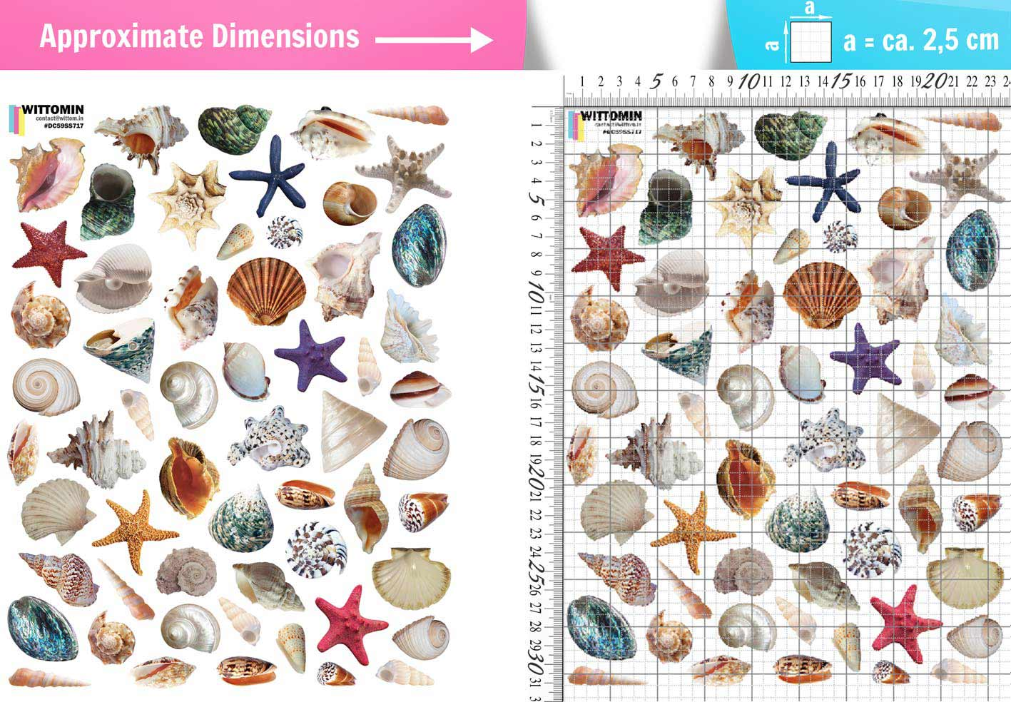 Small shells and pearls sticker set from Wittomin