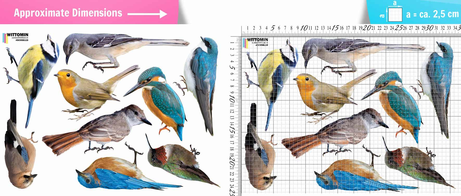 Colourful Birds sticker set from Wittomin